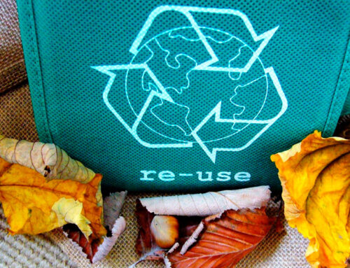 Regalar bolsas ecológicas personalizadas